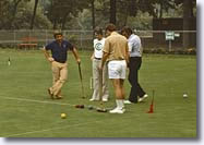 croquet in Central Park